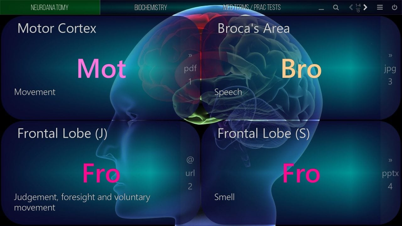 mediaboard video poster medical neuroanatomy 2 ENGLISH HTLM5 e1530111483774 - Mediaboard - Home DE