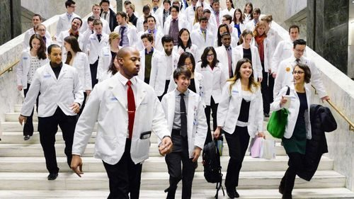 Mediaboard - Lernressourcen für das Medizinstudium